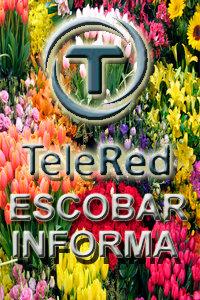 Canal Escobar Tv Online