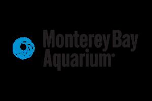 Monterey-Aquarium-Open-Sea-Cam-(USA)